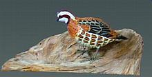 Miniature Quail by Dorothy Brown
