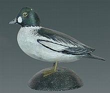 Miniature Goldeneye Drake by A. E. Crowell