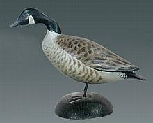 Miniature Canada Goose by A. E. Crowell