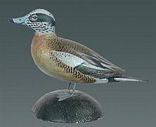 Miniature Widgeon Drake by A. E. Crowell