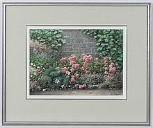 Colin Newman (1991), Watercolour pastel and pencil. Roses and lilies in a flower bed.