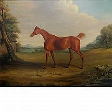 English School 19th Century Portrait of a Horse