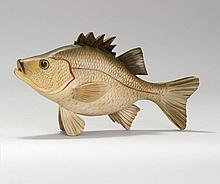 LIFE-SIZE CARVING OF A WHITE PERCH By Square Gould of Cape Cod, Massachusetts. Signed in pencil on back in a carved square