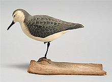 LIFE-SIZE WESTERN SANDPIPER By Robert C. Burkemire of Connecticut. Standing on one leg. Mounted to a driftwood base.