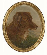 FRAMED OVAL PORTRAIT OF A RETRIEVER Unsigned. Oil on artist board, 17