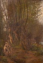 Ernest Auguste LE VILLAIN (1834-1916)  Sous-bois. Huile sur toile signée et daté
