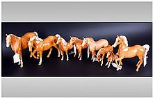 Beswick Horse Figures, 8 in total, All horses in Palomino colourway and excellent condition comprising, 1. Stocky Jogging Mare, Model Number 855, 6''
