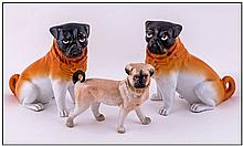 Pair Of Porcelain Pug Dogs Sitting, probably