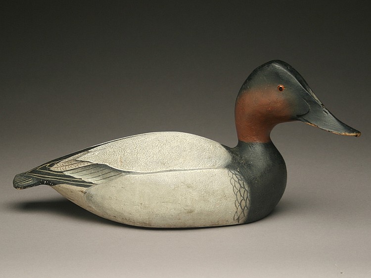 Important presentation canvasback drake, Ward Brothers, Crisfield, Maryland, circa late 1930's.