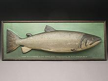 Carved wooden fish model of a 22.5 lb. salmon, carved by Malloch's Studios.