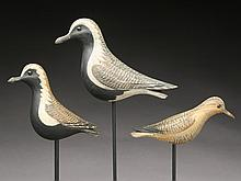 Three shorebirds, David Ward, Essex, Connecticut.