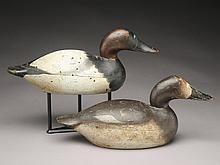 Canvasback hen and drake, Mason Decoy Factory, Detroit, Michigan.