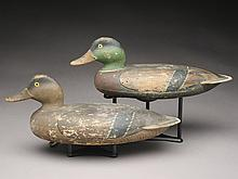 Rigmate pair of mallards, Fred Allen, Monmouth, Illinois, last quarter 19th century.
