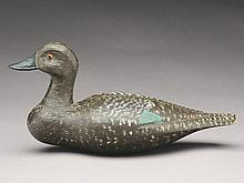 Greenwing teal hen, Pierre Emile LaCombe, Trois Riviere, Quebec, 2nd quarter 20th century.
