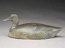 Very rare greenwing teal hen, Harry Townson, Toronto, Ontario, last quarter 19th century.