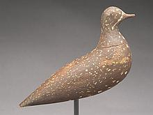 Golden plover by a member of the Harris family, Nantucket, Massachusetts, last quarter 19th century.