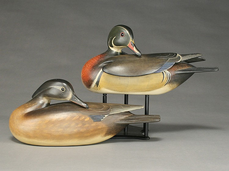 Exceptional pair of preening wood ducks, William Gibian, Onancock, Virginia.