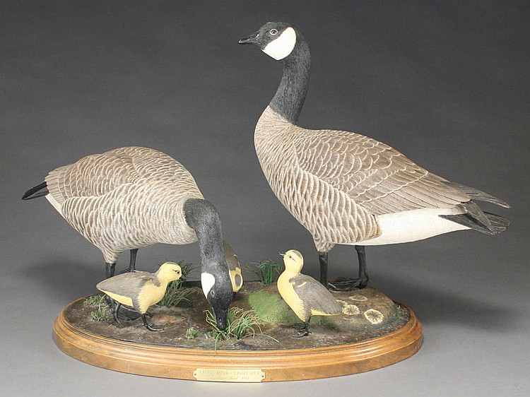 Pair of life size Canada geese with 3 goslings, Bruce Burk, Alta Sierra, California.