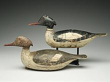 Rigmate pair of mergansers in very rare transitional style, George Boyd, Seabrook, New Hampshire, 1st quarter 20th century.