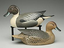 Pair of 1/2 size pintails, Ward Brothers, Crisfield, Maryland.