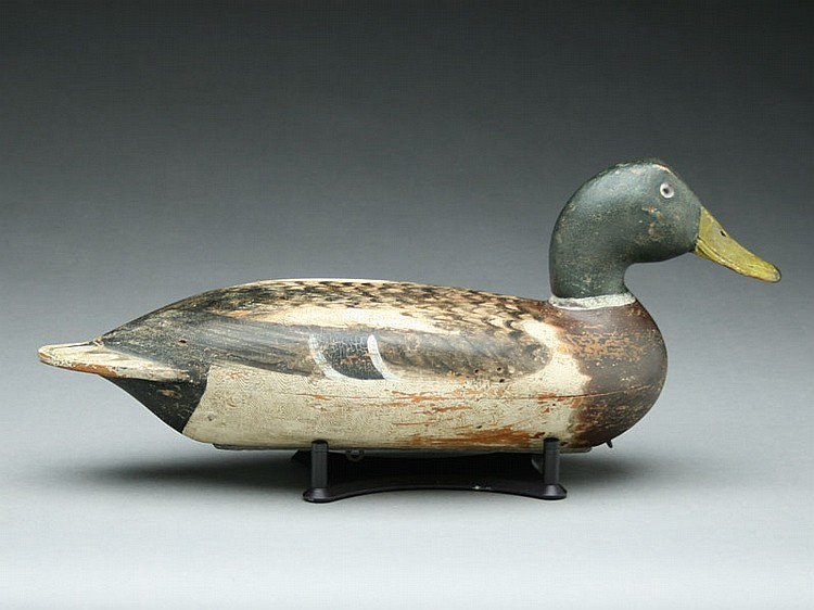 Mallard drake, Robert Elliston, Bureau, Illinois, circa 1880.