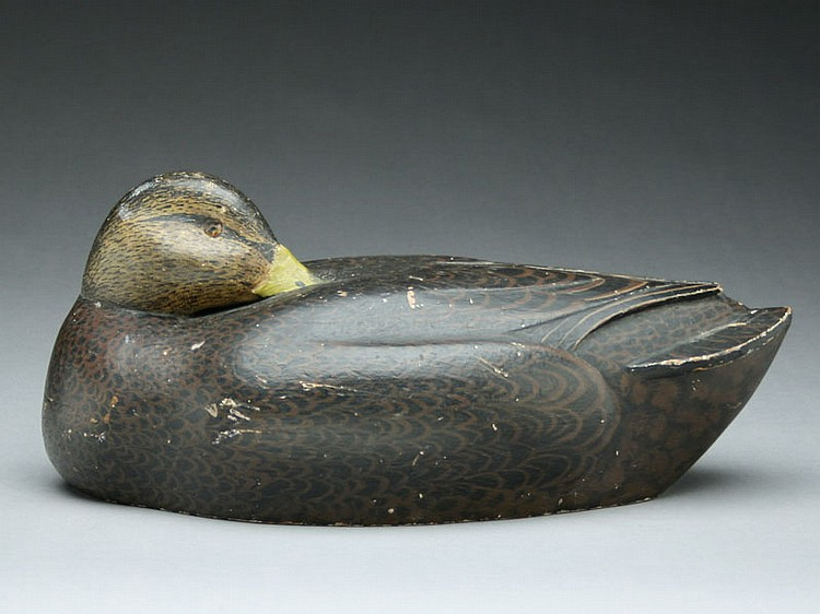 Rare sleeping blackduck, Ferd Homme, Stoughton, Wisconsin, circa 1930.