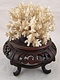 A natural coral growth, approx. 12cm.x12cm. on a