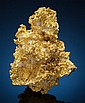 CRYSTALLINE GOLD 16 to 1 Mine, Alleghany District, Neva