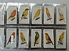 Birds, seven sets in sleeved album. Players aviary