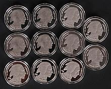 (11) 1 Oz. Buffalo Proofs w/ Copy Number