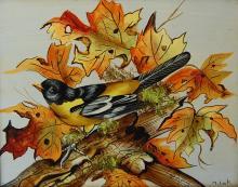 Lak M Bird on white background oil on board