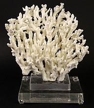 Vintage Natural White Branch Coral Specimen Mounted on Lucite Base. Unsigned. Good Condition. Measures (with base) 13 Inches Tall and 12 Inches Wide. Shipping $85.00 (estimate $100-$150)