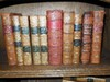 10 Leather Books from the 1800's
