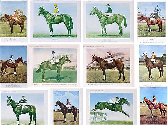 THIRTEEN COLOUR PRINTS OF CHAMPION RACE HORSES All 27cm x 32cm