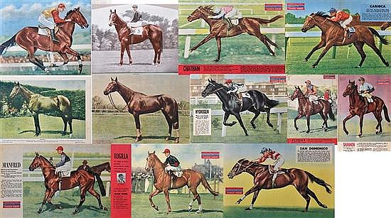 TWELVE COLOUR PRINTS OF CHAMPION HORSES