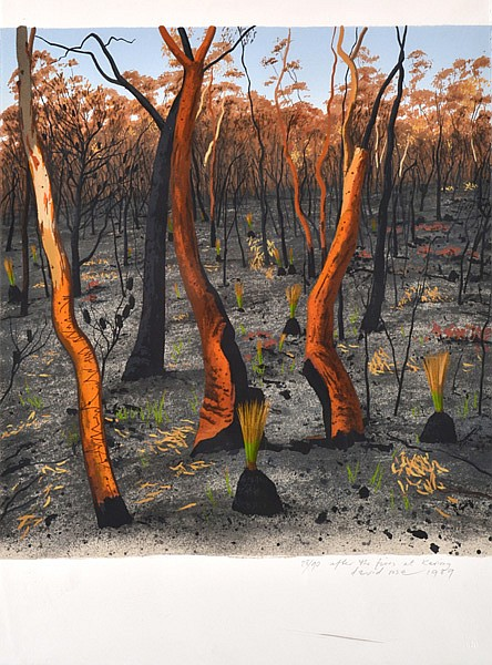DAVID ROSE (1936-2006) After the Fires at Kariong 1989 screenprint 28/90