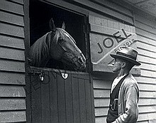 THE COGHLAN COLLECTION OF HISTORIC VICTORIAN HORSE RACING PHOTOGRAPHS