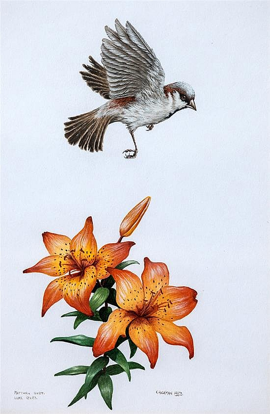 Kevin Hickman (Guernsey, b.1957) A House Sparrow hovering over orange lilies