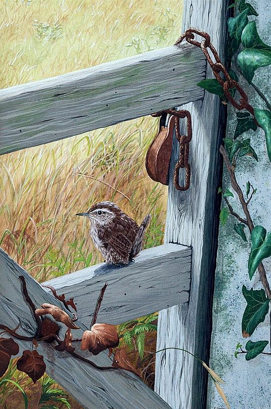 Kevin Hickman (Guernsey, b.1957) A Wren perched upon a farm gate