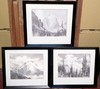 THREE FRAMED ARTHUR SELANDER GREETING CARDS