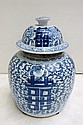 CHINESE BLUE AND WHITE PORCELAIN GINGER JAR with