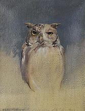 ST. JULIAN FISHBURNE (AMERICAN, 1927-2011) OWL, 1969 Oil on paper: 9 1/4 x 7 in. (sight)