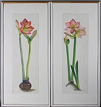 LAURA LEMLEY A GROUP OF FIVE AMARYLLIS Watercolor: 25 1/2 x 8 in.
