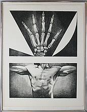 LOWELL NESBITT (AMERICAN, 1933-1993) HAND AND CHEST, 1963 Lithograph: 30 x 23 in.