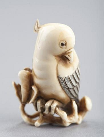 An ivory netsuke of a cockatoo.