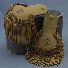 Pair of European Epaulettes with Storage Container