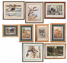 Nine Pieces of Framed Wildlife Art