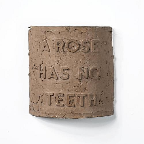 Bruce Nauman , A Rose Has No Teeth