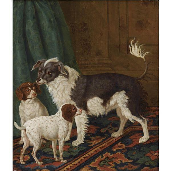 Tethart Philipp Christian Haag , Kassel 1737 - 1812 The Hague A longhaired black-and-white dog with bushy tail and two brown spotted white puppies in an interior oil on canvas