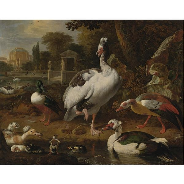 Melchior d'Hondecoeter , Utrecht 1636 - 1695 Amsterdam A Shoveler, a Grey and White Crested Goose, an Egyptian Goose, a Muscovy Duck and Other Waterfowl in a Park oil on canvas